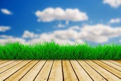 Hintergrund mit blauem Himmel und grünem Gras Lizenzfreie Stockfotos