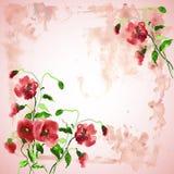 Hintergrund mit Blume der Mohnblume lizenzfreie abbildung