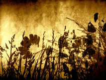 Hintergrund mit Blumen stockfoto
