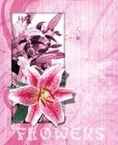 Hintergrund mit Blumen 24 Lizenzfreies Stockfoto