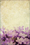 Hintergrund mit Blumenelementen Lizenzfreie Stockfotografie