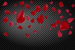 Hintergrund mit dem Fliegen von roten rosafarbenen Blumenblättern auf einem transparenten Hintergrund Vektor Abbildung