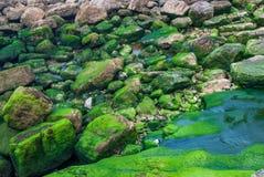 Hintergrund mit den grauen und grünen Felsen mit Wasser lizenzfreies stockfoto