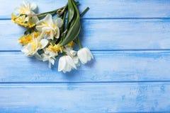 Hintergrund mit den weißen und gelben Blumen auf Blau malte woode Lizenzfreies Stockbild