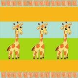 Hintergrund mit drei Giraffen Lizenzfreies Stockbild
