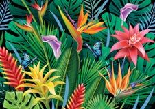 Hintergrund mit exotischen tropischen Blumen Lizenzfreies Stockbild