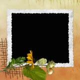 Hintergrund mit Feld und Blumen Stock Abbildung