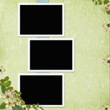 Hintergrund mit Feldern und Blumen lizenzfreie abbildung