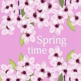 Hintergrund mit Frühlingsblumen von Kirschblüte oder Kirsche Vektor Lizenzfreie Stockfotos