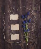 Hintergrund mit frischem blauem Tag des Farbfreien raumes für Text auf einem Braun Lizenzfreies Stockfoto