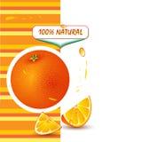 Hintergrund mit frischer Orange lizenzfreie abbildung