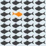 Hintergrund mit gegenüberliegendem Goldfisch Lizenzfreie Stockbilder