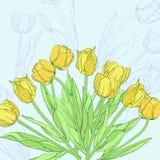Hintergrund mit gelben Tulpen Stockfoto