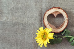 Hintergrund mit gelber Sonnenblume und hölzernem Herzen auf dem Segeltuch Lizenzfreie Stockfotos
