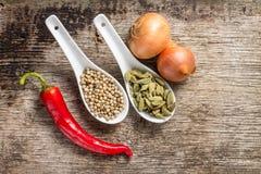 Hintergrund mit Gewürzen und Gemüse auf Planke Stockbilder