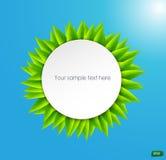 Hintergrund mit grünen Blättern Stockfotos
