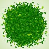 Hintergrund mit grünen Blättern Lizenzfreie Stockfotografie