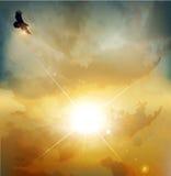 Hintergrund mit hoch-hochfliegendem Adler vektor abbildung