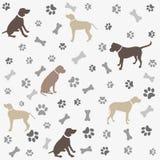 Hintergrund mit Hunden Pfotenabdruck und Knochen Stockbilder