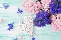 Hintergrund mit Hyazinthen der frischen Blumen und dekorativem Herzen Stockbild