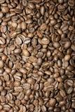 Hintergrund mit Kaffeebohnen Stockfotografie