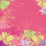 Hintergrund mit Lilie stockbilder