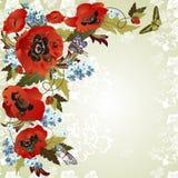 Hintergrund mit Mohnblumen lizenzfreie abbildung