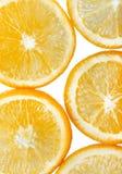 Hintergrund mit orange Zitrusfruchtscheiben Getrennt auf weißem Hintergrund Stockfoto