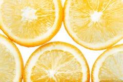 Hintergrund mit orange Zitrusfruchtscheiben Getrennt auf weißem Hintergrund Stockbild
