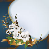 Hintergrund mit Orchideen Lizenzfreie Stockfotos