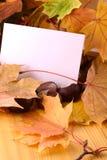 Hintergrund mit Papierblatt und Herbstlaub Stockbilder
