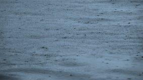 Hintergrund mit Regentropfen auf der Oberfläche Langsame Bewegung stock video