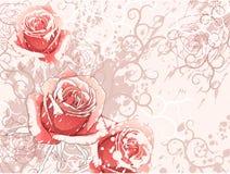 Hintergrund mit Rosen Stockfoto
