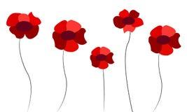 Hintergrund mit roten Mohnblumen Stockbilder