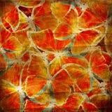 Hintergrund mit Schmetterling Lizenzfreies Stockbild
