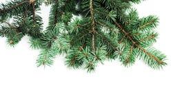 Hintergrund mit Weihnachtsbaumasten und Raum für Text für Stockbilder