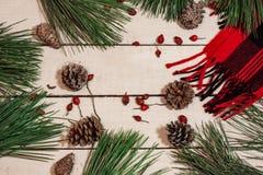 Hintergrund mit Weihnachtsdekoration Lizenzfreie Stockbilder