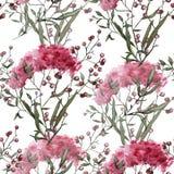 Hintergrund mit Wildflowers Nahtloses Muster Lizenzfreie Stockfotografie