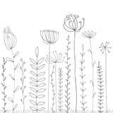 Hintergrund mit Zeichnungskräutern und -blumen Stockfotografie