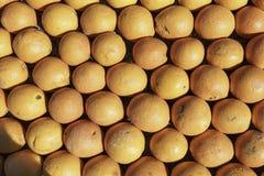 Hintergrund mit Zitronen und Orangen Stockbilder