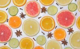 Hintergrund mit Zitrusfruchtscheiben Stockfotos