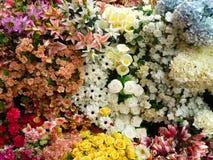 Hintergrund mit Zusammensetzung von Blumen Lizenzfreies Stockbild
