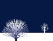 Hintergrund mit zwei Bäumen Lizenzfreies Stockbild