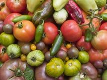 Hintergrund - organisches Gemüse Lizenzfreie Stockfotos