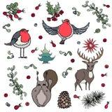 Hintergrund-Rotwild, Eichhörnchen, roter Robin Bird, Beeren Lizenzfreies Stockfoto