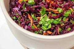 Hintergrund-Salat des Rotkohls mit Karotten und Spinat Lizenzfreie Stockbilder