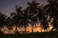 Hintergrund silhouet Lizenzfreie Stockfotografie