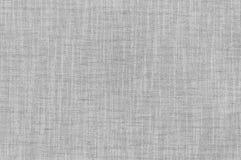 Hintergrund und Beschaffenheit des Weißbuchmusters Stockfotos