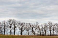 Hintergrund und Beschaffenheit Glättung von bewölkten Wolken im Überfluss Stockbild