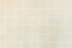 Hintergrund und Beschaffenheit von Dehnungsstreifen knackten auf weißer Creme t Stockfotos